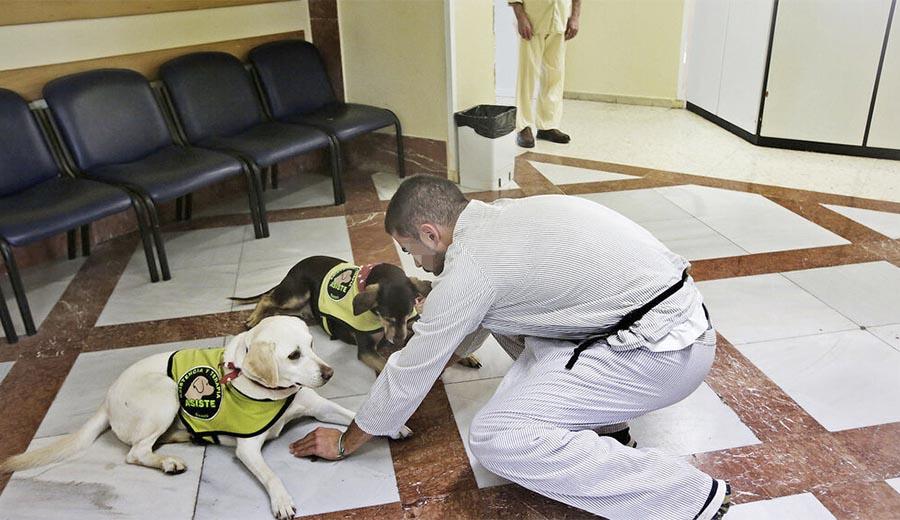 Para volver al mundo, unidad psiquiátrica del Clinico de Puerto Real